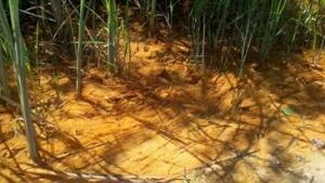 Tar Creek Superfund Site, Picher, OK